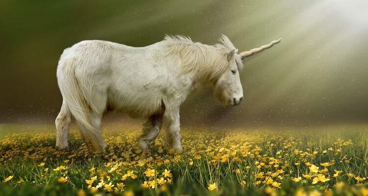 Fábula é uma composição literária fantasiosa que tem animais como personagens.