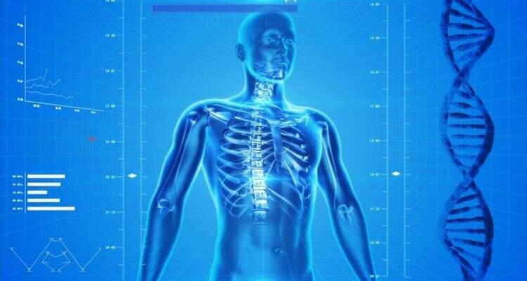 Adaptações Metabólicas causados pelo Exercício Físico